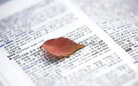 中学生怎样学好英语