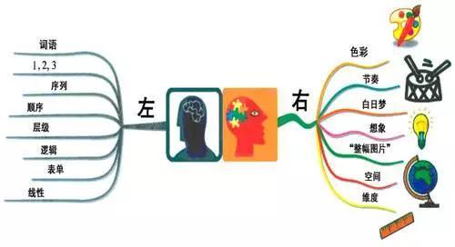 比尔盖茨推荐的《思维导图》,让孩子的记忆力与专注力提高10 倍